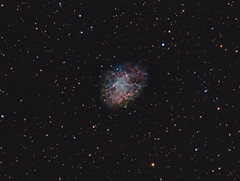 M 01 NB-LRGB Combination (Chuck Manges) Tags: messier crabnebula celestron qhy163m qhyccd taurus astronomy astrophotography astrometrydotnet:id=nova2439925 astrometrydotnet:status=solved