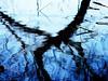 abstract (Darek Drapala) Tags: abstract reflection reflects mirror blue trees tree water panasonic poland polska panasonicg5 park plants nature lumix light unreal sky skaryszewski silhouette silence silkypix