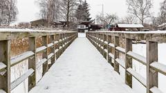 Inselsee Güstrow (Zarner01) Tags: güstrow mecklenburgvorpommern deutschland inselsee barlachstadt outdoor eis schnee bootsanleger steg geländer holz winter snow canoneos80d sigmalenses 1750 os hsm 25022018