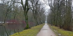 Alley to the theatre of Hildburghausen (:Linda:) Tags: germany thuringia town hildburghausen park baretree alley canal hartriegel