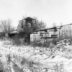 Barn Ruins (yorgasor) Tags: hasselblad 503cw tmax100 planar80mm film 6x6 120 barn farm ruins decay