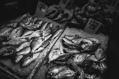 Frischfisch (TS_1000) Tags: newyork chinatown blackandwhitephotography leica q summilux 28mm bnw sw fischersfritze fischkiste
