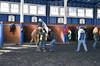 "2018-02-02 (2) r2 'Riders up!' in the paddock at Laurel Park - Jomar Torres on #4 Sir Sidney (JLeeFleenor) Tags: photos photography md marylandracing maryland laurelparkracecourse laurelpark laurelracecourse l jockey جُوكِي ""赛马骑师"" jinete ""競馬騎手"" dżokej jocheu คนขี่ม้าแข่ง jóquei žokej kilparatsastaja rennreiter fantino ""경마 기수"" жокей jokey người horses thoroughbreds equine equestrian cheval cavalo cavallo cavall caballo pferd paard perd hevonen hest hestur cal kon konj beygir capall ceffyl cuddy yarraman faras alogo soos kuda uma pfeerd koin حصان кон 马 häst άλογο סוס घोड़ा 馬 koń лошадь paddock"