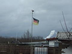 Das halbe Schland soll es sein (mkorsakov) Tags: dortmund nordstadt hafen schrebergarten laubenpieper flagge flag schland chlodwigpoth