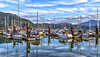 Still Winter (Paul Rioux) Tags: scenic cowichan bay bc marine marina waterfront seascape calm water reflections boats vessels sailboats fishing village outdoor clouds blue sky prioux explored