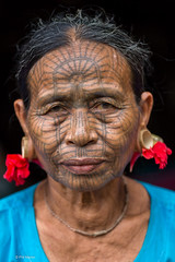 Spiderweb face tattooed Chin woman - Rakhine province, Myanmar (Phil Marion) Tags: myanmar burma burmese bamar shan mon asian oriental buddhist philmarion travel beautiful cosplay candid beach woman girl boy teen 裸 schlampe 懒妇 나체상 फूहड़ 벌거 벗은 desnudo chubby fat nackt nu निर्वस्त्र 裸体 ヌード नग्न nudo ਨੰਗੀ khỏa جنسي 性感的 malibog セクシー 婚禮 hijab nijab burqa telanjang عري برهنه hot phat nude slim plump tranny cleavage sex slut nipples ass xxx boobs dick tits upskirt naked sexy bondage fuck piercing tattoo dominatrix fetish