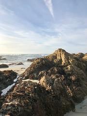 Low Tide at Asilomar Beach (skylarprimm) Tags: ✓ beach california monterey nature ocean pacific pacificocean sky water