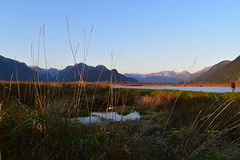 The Pitt Poulder (darletts56) Tags: mountains sky grass water fall nikond5600 sunset snow colours bird pond british columbia