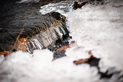 Melting Point (Ir3nicus) Tags: 85mm14g ausen bach eis natur paesmühle siebenquellen straelen wasser nordrheinwestfalen deutschland de afsnikkor85mm114g nikon d700 dslr fullframe fx germany outdoor stream brook ice nature water winter