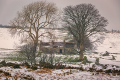 A house on the hill (Chris-Henry) Tags: ireland northernireland countydown derelict trees stone aged winter mourne snow mournemountains peaceful landscape light nature disuse disrepair