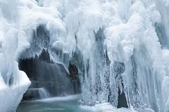 Frozen (Margarita Genkova) Tags: alberta canada river waterfall icicles winterwonderland snow frozen nature landscape johnstoncanyon banffnationalpark
