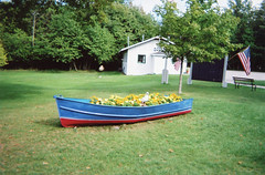 Rowboat-Planter-Michigan_06-24-2008 (Count_Strad) Tags: michigan backyard property lighthouses scenic winter summer flowers flower thistle