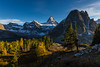 Path to Mount Assiniboine at sunset in larch season (tvrdypavel) Tags: adventure alpine assiniboine autumn beautiful british canada climb columbia discover environment exploration explore extreme fall famous glacier glow great green high hike hiking hut ice impressive lake lakes landscape larches magnificent magog meadow mount mountain national natural nature nub og outdoor park peace peaceful peak preserve recreational reflection relax remote rock rockies scenery sky summer summit tranquility travel trees trek valleys walk wilderness yellow