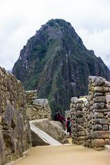 Machu Picchu 29
