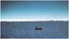 Homage to Hemingway (kurtwolf303) Tags: boat ocean water sky sea mare person silhouette blue blau tributetohemingway seascape 250v10f unlimitedphotos 500v20f