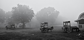 Indian countryside on a misty morning