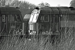 redundant traction (Trev 'Big T' Hurley) Tags: 60042 thehundredofhoo 60037 scrap redundant withdrawn traction loco class60 demic toton depot sidings mono