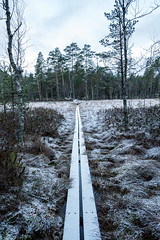 Wooden path (imagesbystefan.com) Tags: wood wooden footpath outdoors forest leading woods trees swamp hike trekk nature landscape winter snow cold season sweden meadow vertical composition