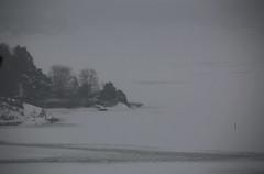 Grey (Leifskandsen) Tags: winter gale bay ice oslofjorden coast cold wind camera canon living leifskandsen skandsenimages scandinavia skandsen