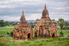 Two of the 2,200+ temples near Bagan, Myanmar (Phil Marion) Tags: myanmar burmese asian oriental buddhist philmarion candid woman girl boy teen 裸 schlampe 나체상 벌거 desnudo chubby nackt nu ヌード nudo khỏa 性感的 malibog セクシー 婚禮 hijab telanjang nude slim plump tranny sex slut nipples ass boobs tits upskirt naked sexy bondage fuck tattoo fetish erotic feet cameltoe cock desi japanese african khoathân latina khỏathân beach public swinger cosplay gay wife dick milf crossdress ladyboy panties babe