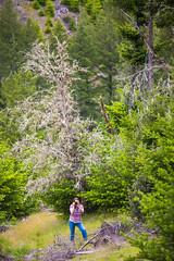 April (Thomas Hawk) Tags: america aprilgutel glendale oregon southernoregon usa unitedstates unitedstatesofamerica fav10