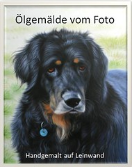 Oelbild Hund (Auftragsmalerei - Chinamaler.de) Tags: tierportrai ölgemälde auftragsmalerei hund ölbild