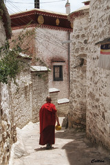 The monk - Drepung Monastery, Lhase, Tibet 哲蚌寺 (cattan2011) Tags: lhasa tibet tibetan monk culture buddhism traveltuesday travelbloggers travelphotography travel architecturephotography architecture monastery landscapephotography landscape 西藏 拉萨 drepungmonastery 哲蚌寺