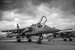 Sepecat Jaguar T.4 XX835 (Ian Garfield - thanks for almost 2 million views!) Tags: ian garfield photography jaguar cosford sepecat airfield airbase avgeek canon adour big cat outdoor royal air force raf farewell mono black white head nose sky airplane xx835 t4 cockpit