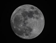 Vollmond / full moon (jörg opfermann) Tags: sony ilce 7m2 danubia 500mm f8 mond vollmond moon sky