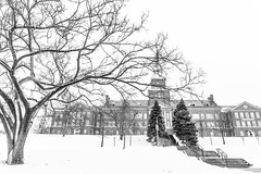 IMG_5970-2 (Anh Dang ^_^) Tags: sky snow winter monochrome bw landscape tree trees ohio cincinnati uc campus building tower cold branches mcmicken college university 24105l canon wide
