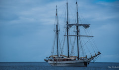 2017 - Regent Cruise - St. Lucia - Rigged Ship (Ted's photos - For Me & You) Tags: 2017 cropped nikon nikond750 nikonfx regentcruise stlucia tedmcgrath tedsphotos vignetting fullriggedship fullyriggedship ship boat water bluesky blue 3mast rigging sailboat sailingship masts mastrigging ropes