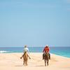 Ride (Thomas Hawk) Tags: baja bajacalifornia cabo cabosanlucas loscabos mexico beach horse vacation fav10