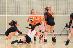 2018 Bel-Air Direct OCAA Women's Volleyball Championship - Mohawk vs. Fanshawe-32 (centennial_colts) Tags: green ocaa 2018ocaa belairdirect volleyball womens varsity womensvolleyball centennial college