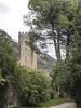 Torre del Palazzo Caetani di Ninfa -Entrata del Parco -Veduta Autunnale (sandromars) Tags: italia lazio latina oasidininfa