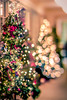 christmas tree and decorations with shallow depth of field (DigiDreamGrafix.com) Tags: christmas decorations newyear christmaseve festive greeting happy holiday xmas merry christmastime firtree lights bokeh blur soft nice tilt lens decor toys presents season