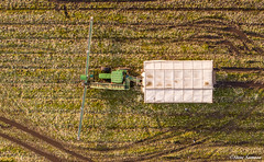 Down on the farm, Leeks. (Steve Samosa Photography) Tags: rainford england unitedkingdom gb farming farm farmland tractor harvest aerial aerialview dronecamera drone droneshot topdownview