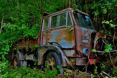 fiat 642 T2 (riccardo nassisi) Tags: camion abbandonato auto abbandonata abandoned car truck wreck wrecked rust rusty rottame relitto ruggine ruins scrap scrapyard genova fiat 642 epave decay urbex