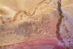 Dress Materials (ForestPath) Tags: macromondaysgroup thememyfavouritenovel prideandprejudice janeausten dressmaterials lace fancycloth sewing women 1800s novel book about12focuslayersstacked