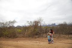 IMG_9770 (Júnior Pinheiro) Tags: açude cedro sertão galinha choca quixadá ceará brasil grávida pregnancy