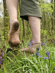 Barefoot through the bluebells (Barefoot Adventurer) Tags: barefoot barefooting barefoothiking barefeet barefooter barefooted baresoles barfuss anklet arches wrinkledsoles walking woodland bluebells earthsoles earthstainedsoles earthing ruggedsoles healthyfeet happyfeet hardsoles connected ankles livingleather leathertoughsoles roughsoles naturallytough natural earth energy texture strongfeet stainedsoles spring healthfeet supplesoles grip grounded grounding