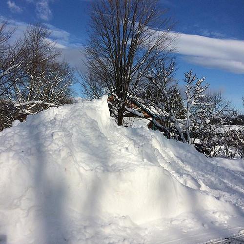 Glorious sun on the hills of snow #winter #sun #snowbank #february #amityfarmbatik