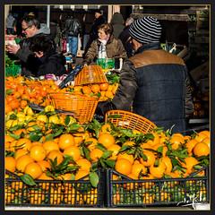 Marché Jeanne d'Arc / Joan of Arc market - Toulouse (christian_lemale) Tags: marché market jeanne arc jeannedarc joan toulouse france nikon d7100 agrumes citrus oranges citrons limes personnes people