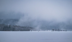 Lost in Nature (bjorbrei) Tags: winter snow ice lake shore hillside hills clouds fog mist forest trees spruces maridalen maridalsvannet lakemaridal oslo norway