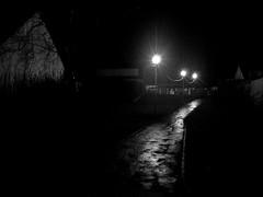 (Jean-Luc Léopoldi) Tags: bw noiretblanc nuit night lumière light éclairagepublic streetlighting mouillé pluie reflets ville désert nobody empty street 3