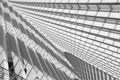 draperie (ohank1951) Tags: shadows draperie abstract bw blackandwhite monochrome architecture steel concrete glass lines curves sky gare station bahnhof calatrava luikguillemins luik lüttich liègeguillemins belgië labelgique belgium canoneos1100d efs1022mmf3545usm