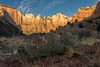 Zion Sunrise (AVagts) Tags: zion