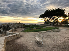No Lovers at Lovers Poiint (Ron Rothbart) Tags: loverspoint pacificgrove bench clouds dusk iphone iphoneography rocks sunset tree wall