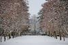 samsebeskazal-2187.jpg (samsebeskazal) Tags: winter newjersey ringwood
