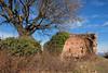 Sulle colline sopra Gattinara (STE) Tags: rudere ruderi resti castello castel san lorenzo gattinara inverno winter fuji fujifilm xt20