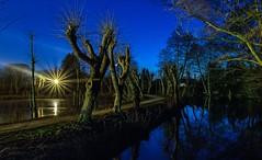 blaue Stunde (gabrieleskwar) Tags: outdoor blau bäume licht leuchten lichter land weg wasser spiegelung spaziergang schatten farbe formen